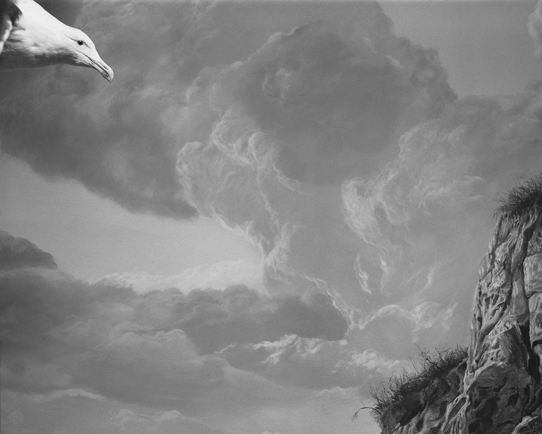 Maison de l'oiseau 05- Claude Belime